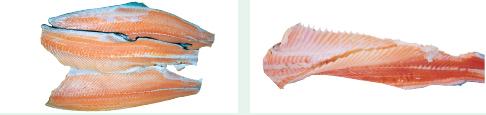 Filleting salmon fish