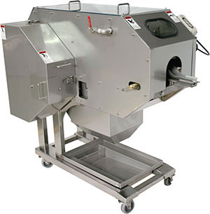 Filleting machine for salmon