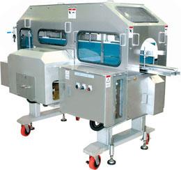 Filleting machine for salmon fish