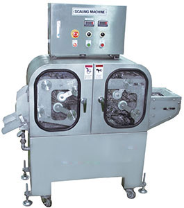 Universal Scaling Machine USM-100
