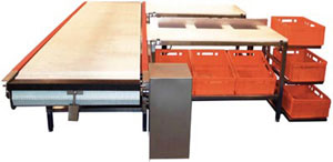Automatic conveyor lines for deboning