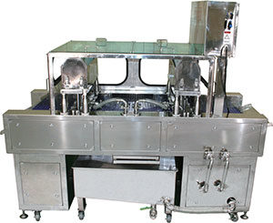 Injection machine fish fillets
